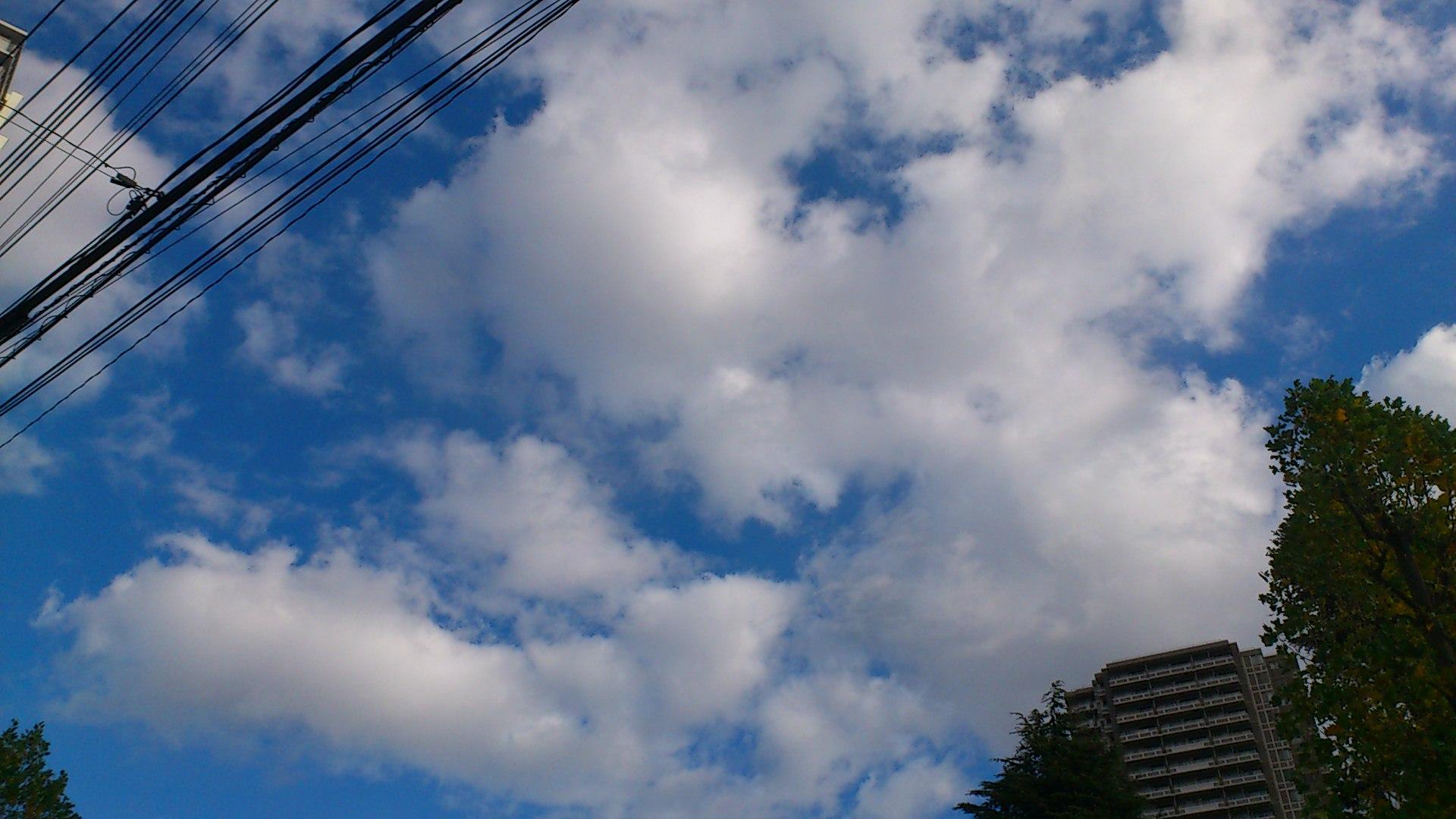 『homme』東京千秋楽・朝。